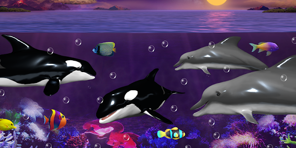Dolphins and orcas wallpaper screenshot 20