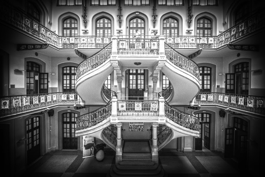 staircase by Schiffeleers Steven - Buildings & Architecture Architectural Detail ( stairs, trappenhel, art, staircase, architectural, case, trap,  )