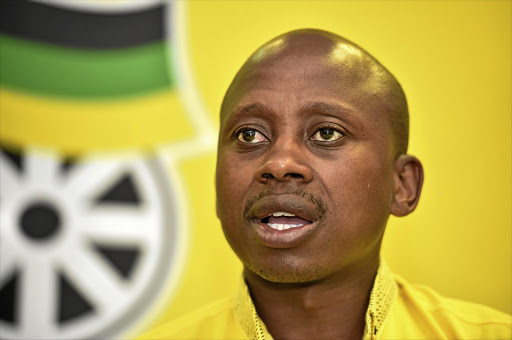 The ANC's national working committee supports calls for controversial Andile Lungisa, pictured, to step down as MMC in the Nelson Mandela Metro council. The NWC also said Buffalo City regional chairperson Pumlani Mkolo should step aside for his involvement in the Nelson Mandela funeral funds scandal.