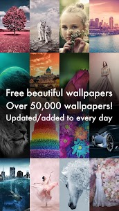Beautiful HD Wallpapers – Cool Background Images 1