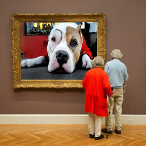 Facination by Lee McLaughlin - People Couples ( lee mclaughlin, seniors, red, older, art, funny, couple, humor, museum, exhibition, dog, painting )