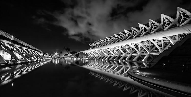 Ciudad de las Artes y las Ciencias di daniele1357
