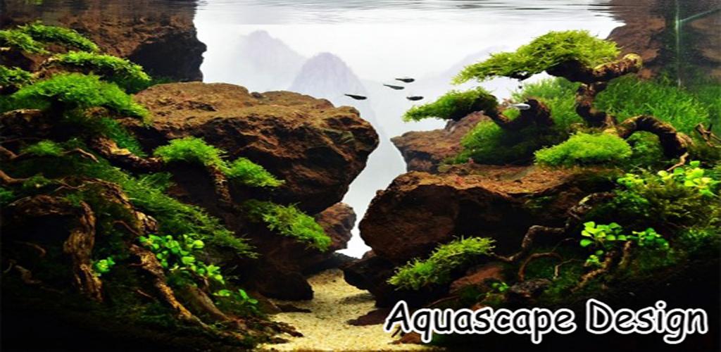 Download Best Aquascape Design Ideas Apk Latest Version App By