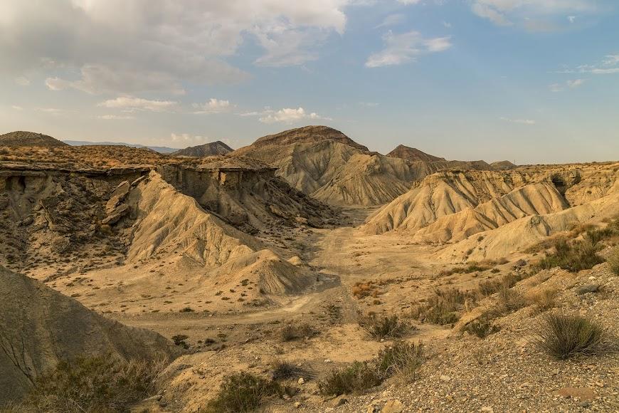 El oasis del Desierto, un lugar único por descubrir.