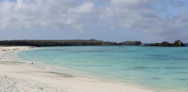 Puerto Villamil, Ilha Isabela