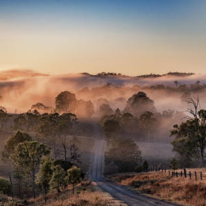 Foggy Road-23-4-2016-Edit.jpg