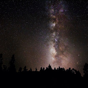 by Peter Louer - Landscapes Starscapes