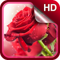 Red Roses Live Wallpaper HD icon