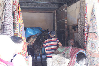 Photo: Traffic jam in souk, Fes Animals pretty much do all the deliveries in the souks because they are tiny alleyways.