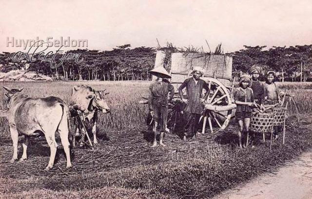 19 bức ảnh về cuộc sống Việt Nam cách đây 100 năm - ảnh 10