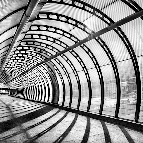 Tunnel Vision by Adrian Campfield - Black & White Buildings & Architecture ( abstract, uk, patterns, monochrome, poplar, black and white, canary wharf, gritty, grit, line, reflections, architecture, docklands, shadows, city, mirror, england, monochromatic, man made, london, diagonals, tunnels, dark, glass, light, mono,  )