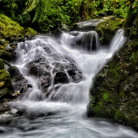 Obstacles  by Rodel Diaz - Nature Up Close Water