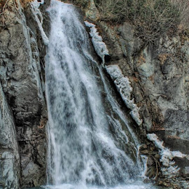 Waterfall by Patricia Phillips - Nature Up Close Water