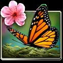 Season Zen Free icon