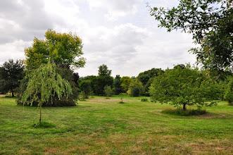 Photo: RHS gardens Wisley