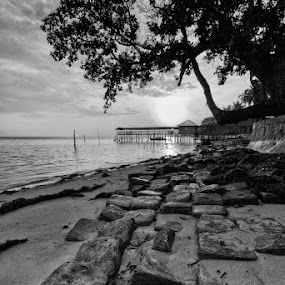 Rocky beach by Fariz Mohammad - Landscapes Beaches ( black and white, stone, beach )