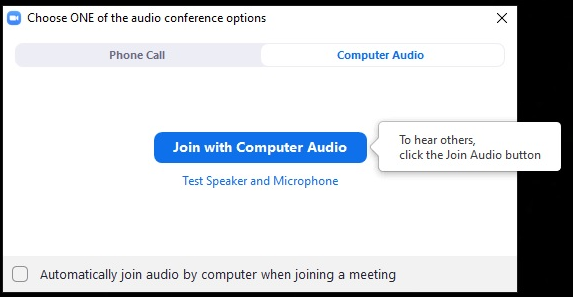 Zoom audio conference options
