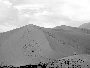 Photo: Dune Walkers - near Dunhuang