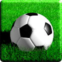 mini SOCCER icon