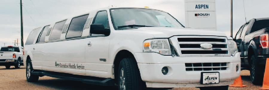 aspen ford limo service