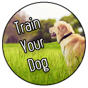 Train Your Dog icon