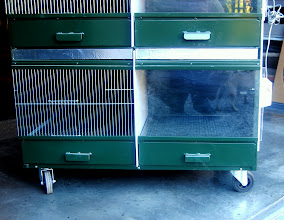Photo: Frontal view of nursery box with wheels for easy transport and cleaning