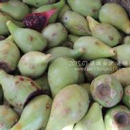 阿婆蘆薈仙人掌冰