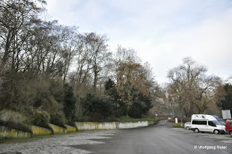 Photo: Der Hang links neben dem Bus-Parkplatz bei der Wilhelma will man voraussichtlich roden