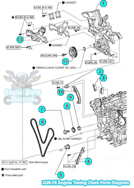 2006 Toyota Rav4 Timing Chain Parts Diagram  2gr