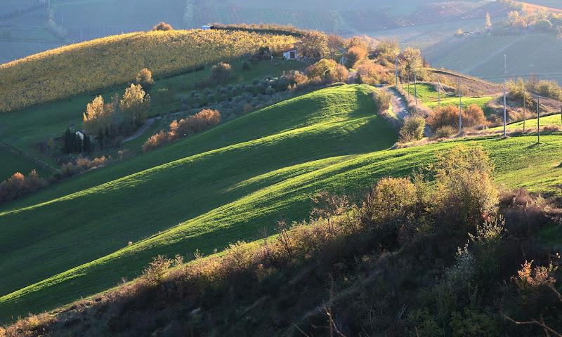Colline agricole di MauroV