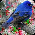 Puzzle - Birds