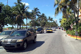 Photo: Palm trees and sun in Miami http://ow.ly/caYpY