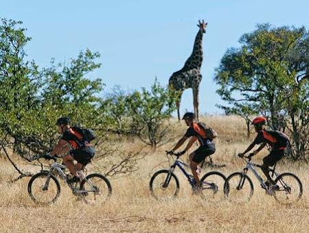 Велотур в Южной Африке