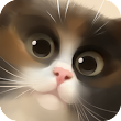 Cat in the Box 1.0.0.apk