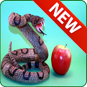 Game snake and apple icon