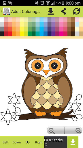Adult Zen Colouring
