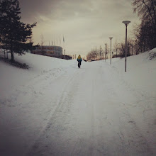 Photo: My morning commute for this week the walking/bike trail in Fornebu.