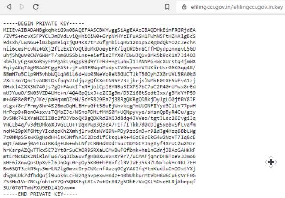 Screenshot of exposed RSA key