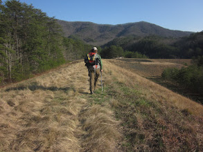 Photo: Heading towards another shelter - an easy and beautiful 10-mile day