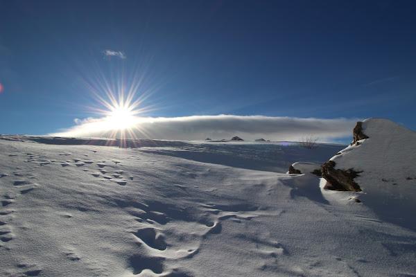 White&Blue di El Sunrise