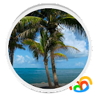 Beach Trees Live Wallpaper icon