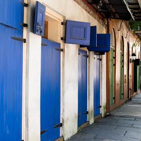 French Quarter New Orleans street by Gwyn Goodrow - City,  Street & Park  Neighborhoods ( doors, new orleans, cobblestones, blue, green, street, neighborhood, historic, sidewalk,  )