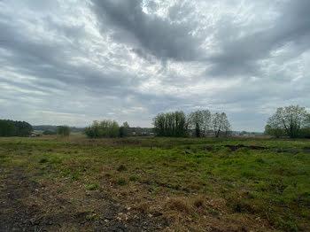 terrain à Téthieu (40)