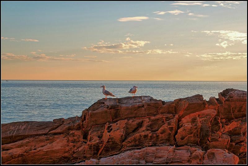 On the rock di maurizio_longinotti