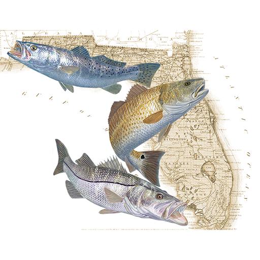 Florida Fishing Regulations