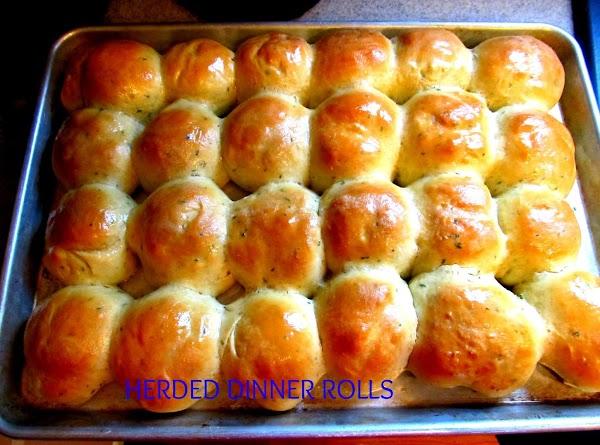 Herbed Dinner Rolls Recipe