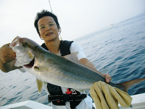 Photo: 福崎さんは、良型のカンパチでした!