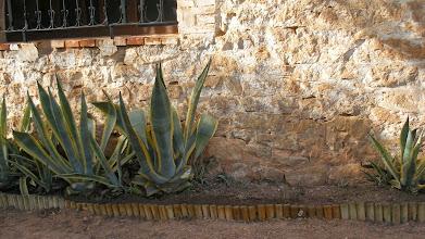 Photo: Cada any es fa una cosa o altra. Enguany, un bordó de fusta a les plantes d'una paret de l'ermita i un rentamans al WC.
