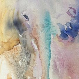 abstract elephant by Jeanne Knoch - Painting All Painting