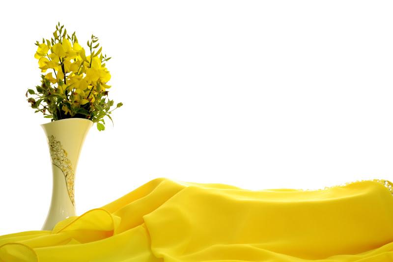 fiori e velluto di gabriele82